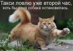 http://thumbnails35.imagebam.com/10494/50a64c104933795.jpg