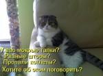 http://thumbnails35.imagebam.com/10494/ebe1e8104933726.jpg