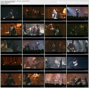 NICK CAVE & THE BAD SEEDS - Saint Huck - live in Lyon 2001 - 1 music video (DVD rip AC3)