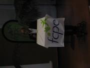 Congrès national 2011 FCPE à Nancy : les photos 101cf9148280972